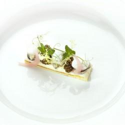 Mistral Restaurant, haute cuisine and molecular cuisine #10